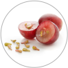 Grape seed extract: